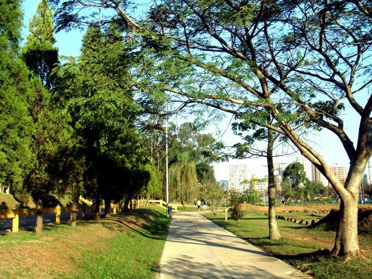 Helbor bosque maia lançamento